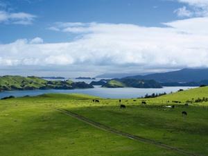 Datentransfer: EU-Kommission gibt Datenschutz-OK für Neuseeland
