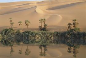 Oase, Mandarasee im Erg Ubari, Sahara, Libyen