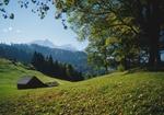 Herbstlandschaft mit Heustadel, Baeumen und Bergen