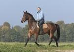 Junge Frau reitet auf Pferd