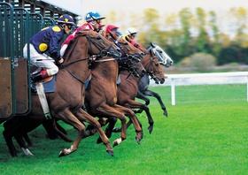 Pferderennen (1)