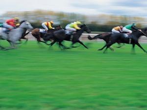 Ländererlass Kommentierung: Zuständigkeit für Sportwettensteuer