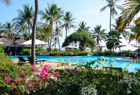 Garten mit Pool und Palmen