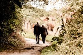 Rentnerpaar geht in Wald spazieren