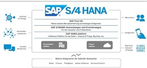 SAP Reporting-Innovationen: In-Memory, Cloud und Mobile