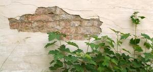 BGH: Haftung der Wohnungseigentümer bei verzögerter Sanierung