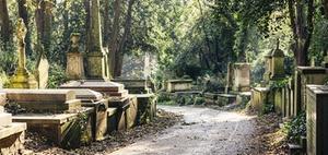 Bald Sozialwohnungen auf ehemaligen Berliner Friedhofsflächen?