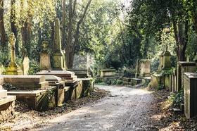 Sehr grüner Friedhof mit alten Grabsteinen