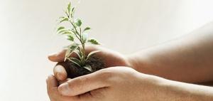 Nachhaltigkeitscontrolling: Green Controlling-Preis 2015