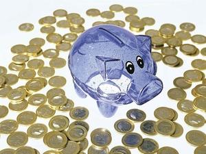 Steuerzahlerbund ermittelt Einsparpotenziale