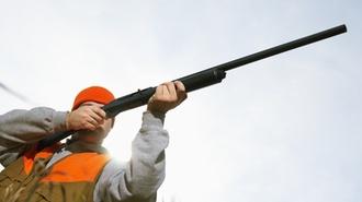 Bayerisches LfSt: Umsätze im Rahmen der Selbstnutzung und Verpachtung von Jagdbezirken
