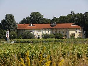 Chinesen kaufen Steigenberger Hotel Deidesheim