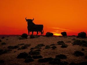 Deutsche Investoren wieder im spanischen Markt aktiv
