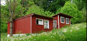 Tübingen: OB Palmer will Eigentümer für Tiny Houses gewinnen