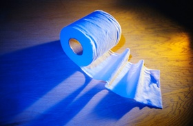 Toilettenpapier-Rolle