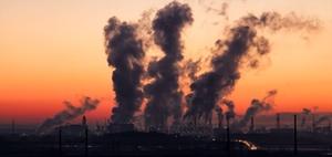 Arbeitgeberattraktivität: Umweltbewusstsein ist wichtig