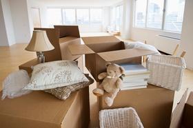 Umzugskartons leere Wohnung Teddy