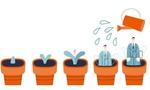 Unternehmensnachfolge, Nachfolgeplanung