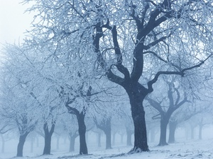 Kalte Witterung -  Anspruch auf warmen Arbeitsplatz?