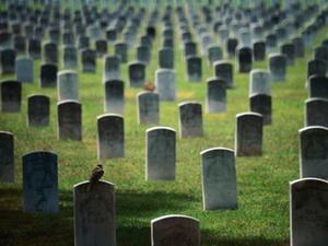 Altenhilfe: Sozialhilfe zahlt keine Fahrtkosten zum Friedhof