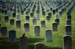 viele Grabsteine