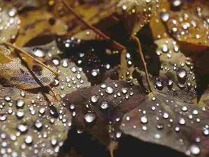 Sicher und geschützt durch Herbst und Winter
