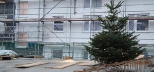 Colours of law: Dickes Ende für die Weihnachts-Deko?