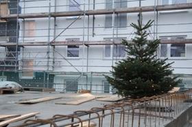 Weihnachtsbaum WIS