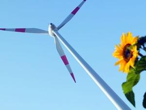 25 Prozent der Deutschen setzen auf regenerative Energien
