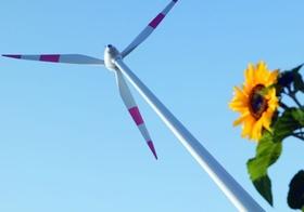 Windkraftrotor, Sonnenblume