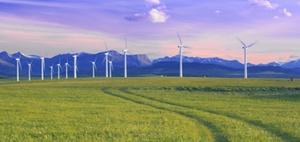 Green Bonds: Nachhaltige Fonds werden beliebter bei Anlegern