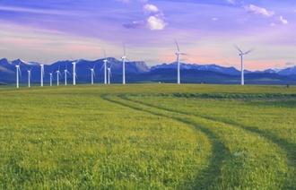 Green Bonds : Nachhaltige Fonds werden beliebter bei Investoren