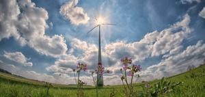 Klimaschutzgesetz: Das planen die Bundesländer