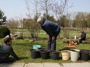 Gartenkonzept: Auf vielen nachbarschaftlichen Schultern