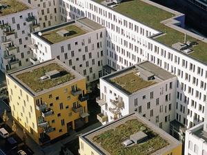 Wohnungspolitik: Mieterbund formuliert Forderungen an die Politik