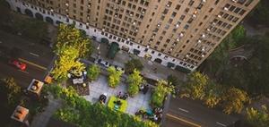 Im Test: Was tun grüne Dächer fürs Stadtklima?