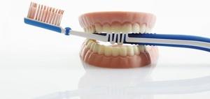 Zahnreport
