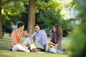 Drei junge Personen, Studenten, sitzen in Wiese